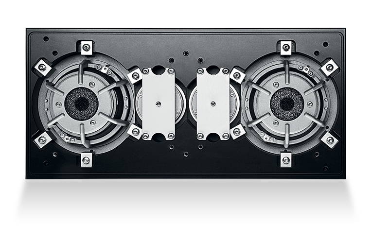 Dynaudio Evidence drive units